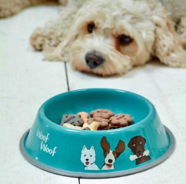 Sea Blue Dog Bowl