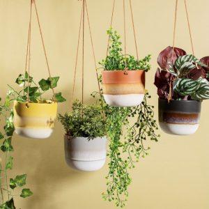 Hanging Plant Holder